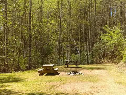 Tent Sites in Brevard NC